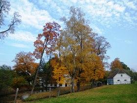 Widoki jesieni w Zagwiździu (8).jpeg
