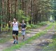 Galeria V bieg borsuka 10092016