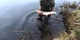 Amury z Zagwiździa2.jpeg